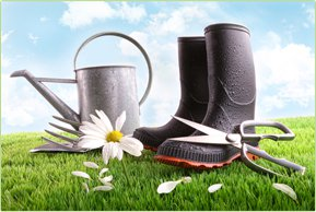 Unser Sortiment an Produkten. Dünger, Rasen und vieles mehr.